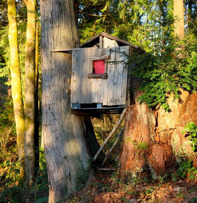 Turn your trash backwards: Used wooden pallets are perfect for treehouses