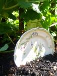 Garden Plates in the Garden photo by Rebecca Rockefeller