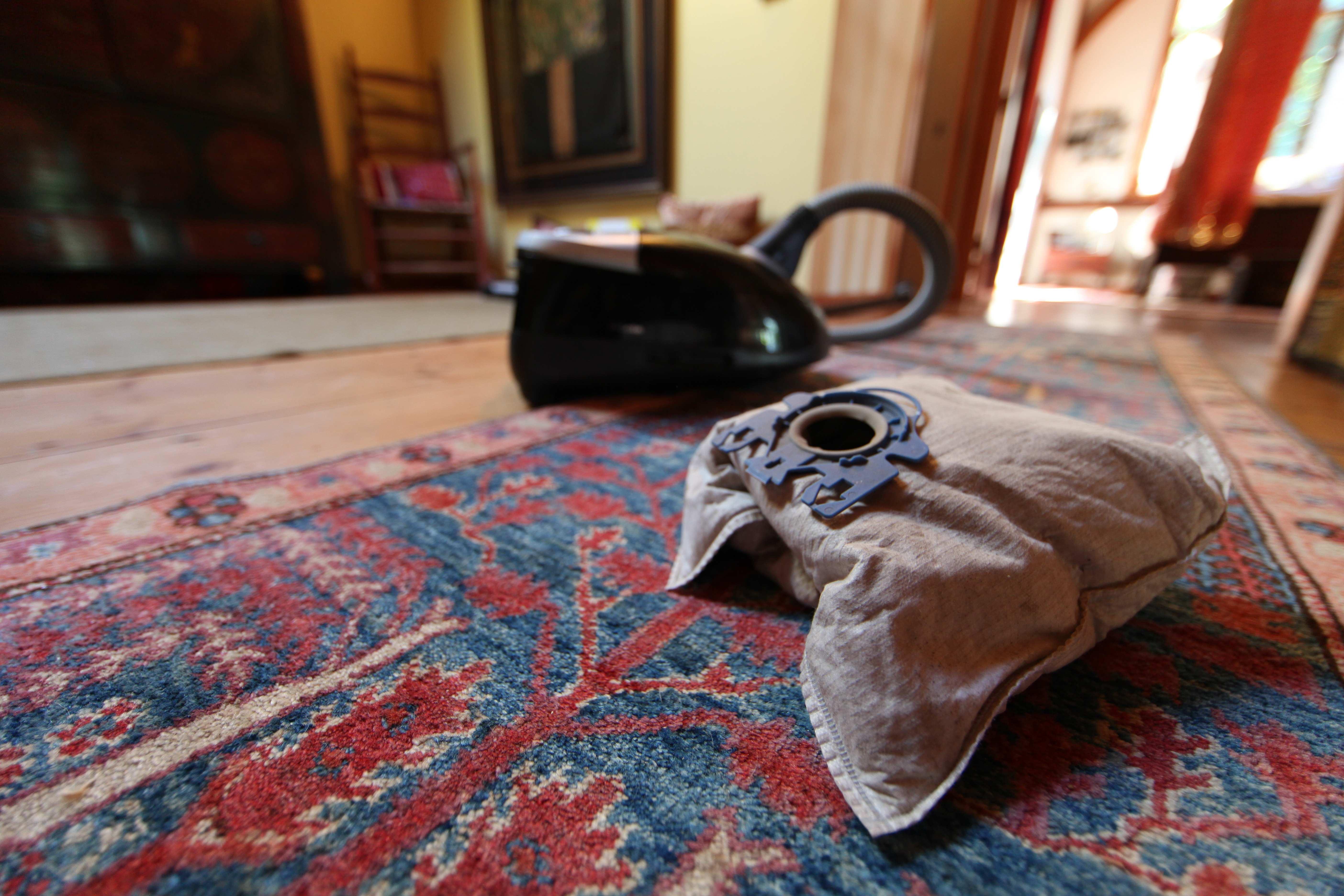 My Full Vacuum Cleaner Bag Photo C Liesl Clark