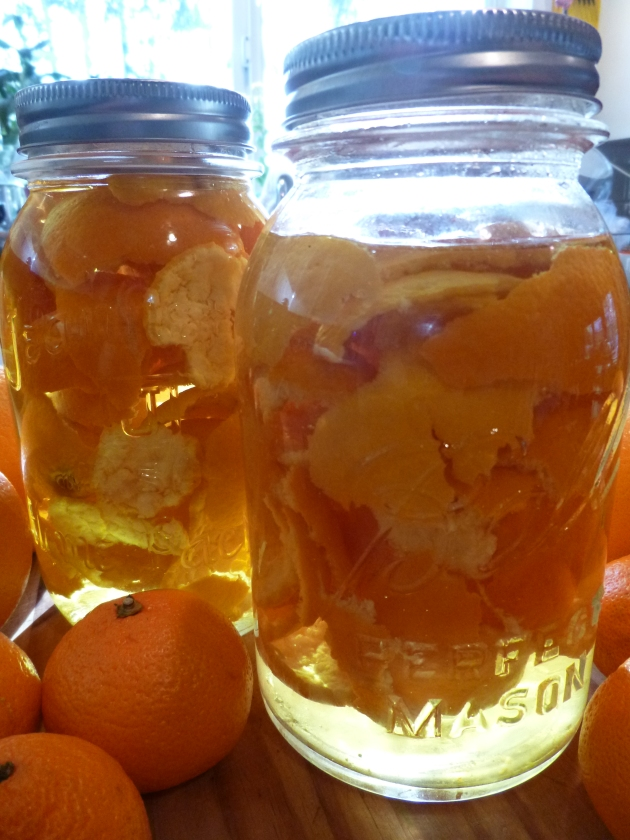 Orange Peels in the Jar, 2 Days Old
