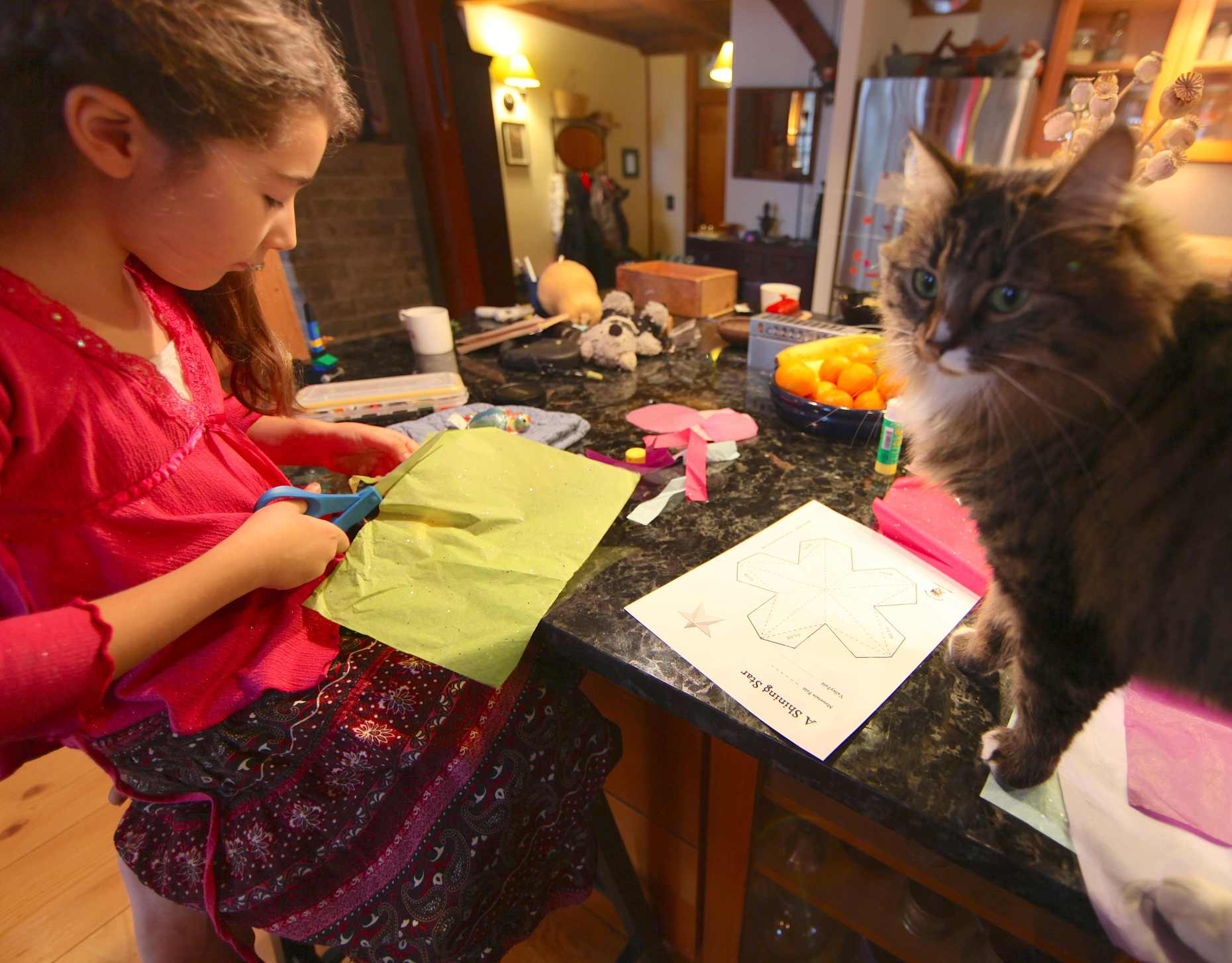 Felines Like Ornament-Making, Too