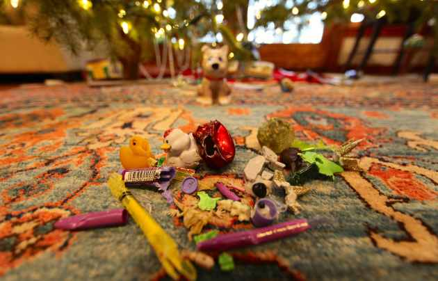 Microplastics in Front of the Christmas Tree. Photo © Liesl Clark