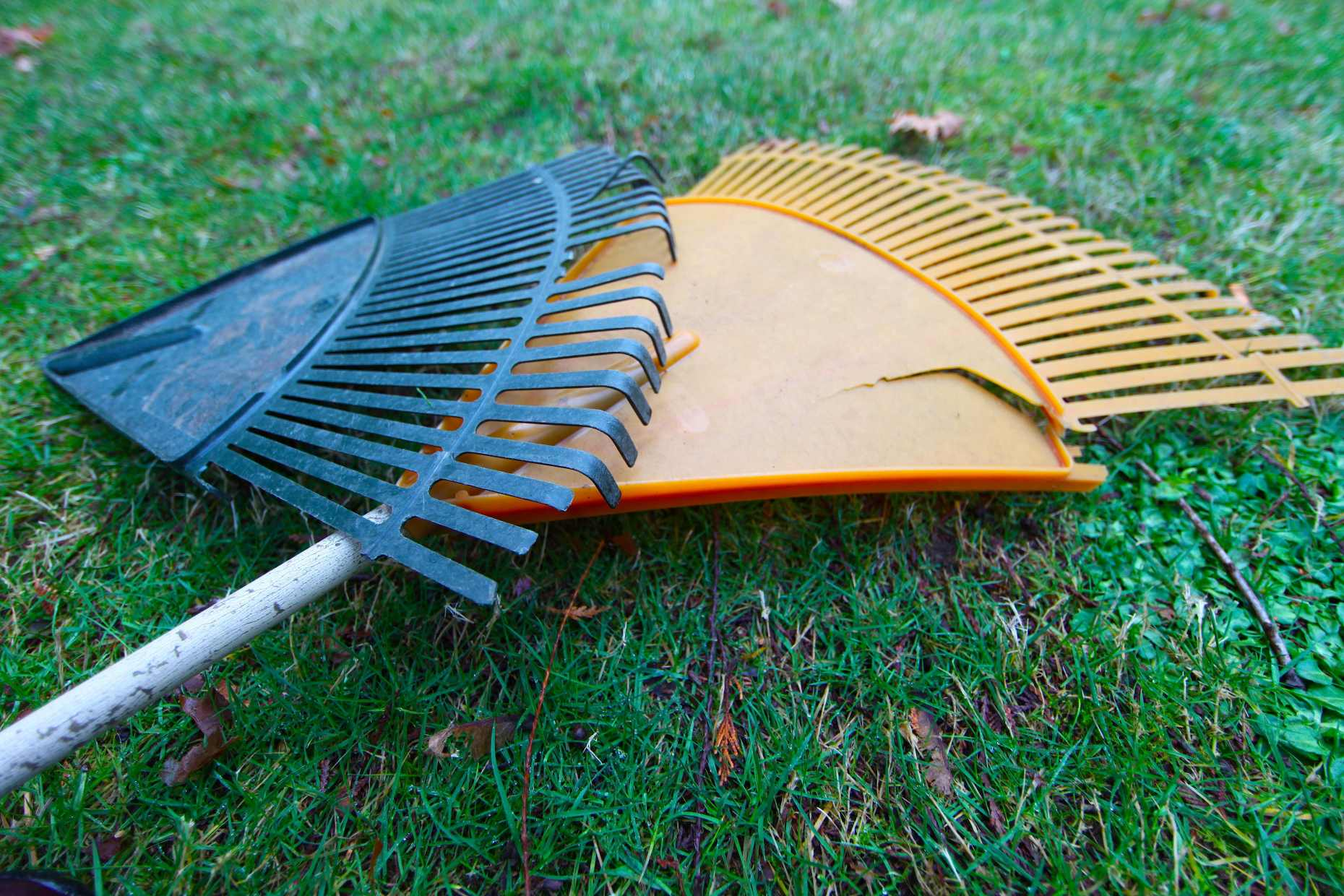 Two plastic rakes, not very old, both just about useless. Photo © Liesl Clark