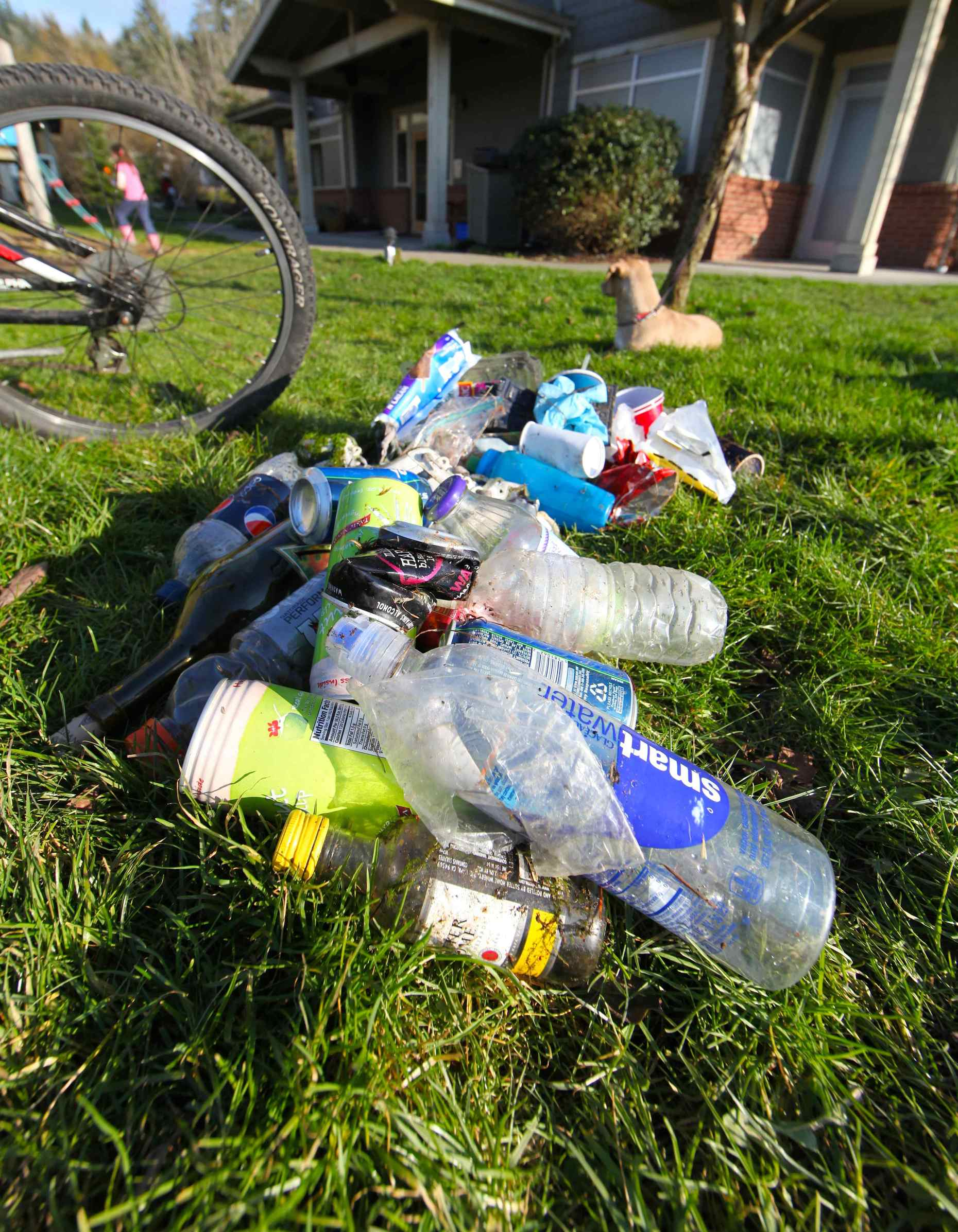 Beverage Containers Picked Up on Just One Side of the Road. Photo © Liesl Clark