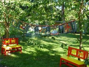 Backyard Bunting
