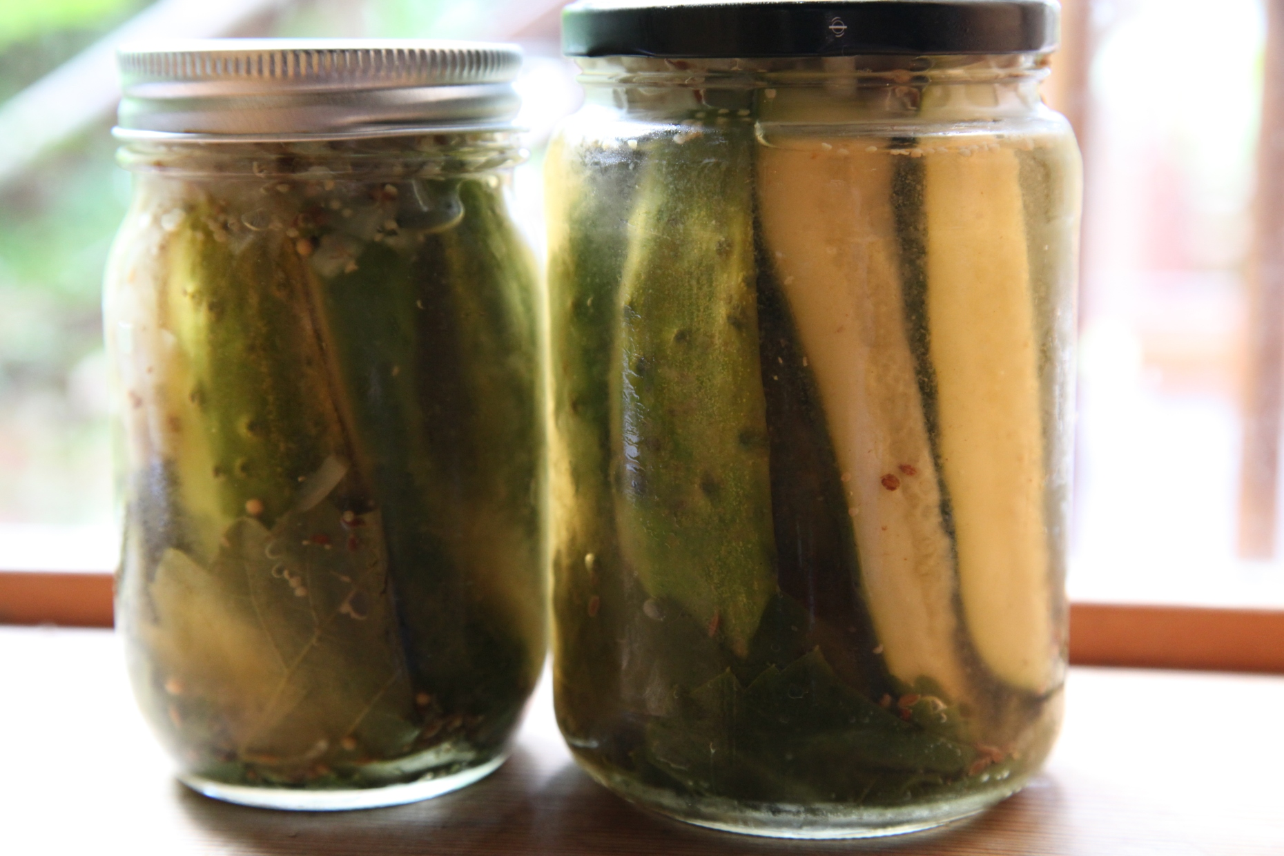 Organic Homemade Refrigerator Pickles. Photo © Liesl Clark