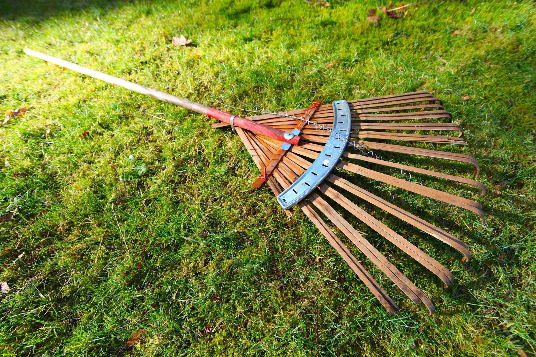 Our zero waste bamboo rake is nearing the end of it's life. Photo © Liesl Clark