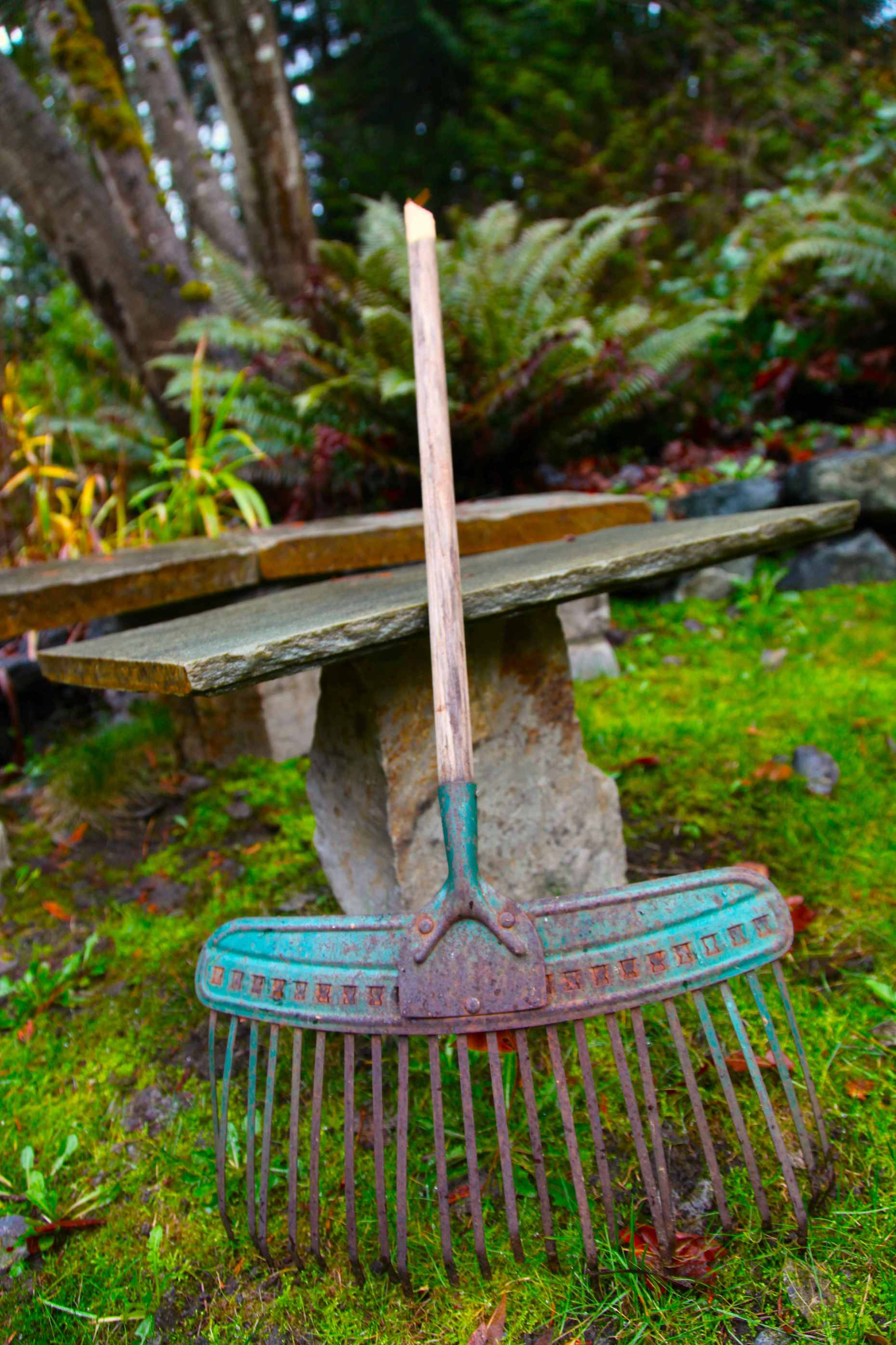 Here's the metal rake I need to mend. The handle broke off but the head keeps on working! It's been a nice child-sized rake, but I'm selfish, I want it back! Photo © Liesl Clark