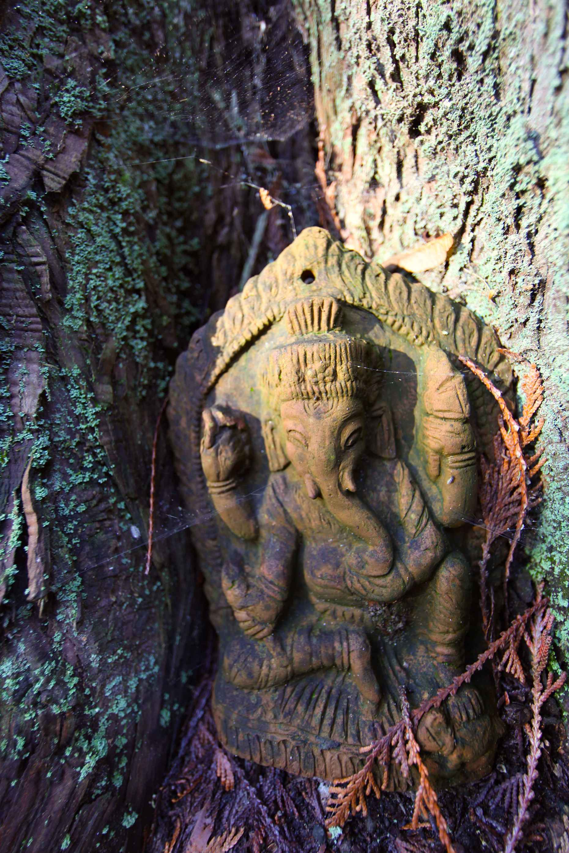 This nook was filled with Ganesh, another elephant. Photo © Liesl Clark