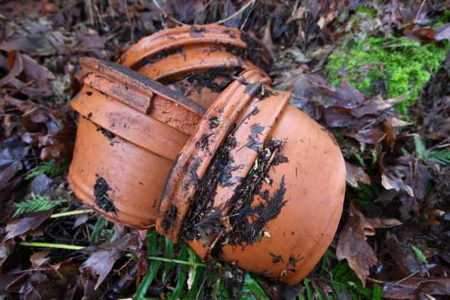 A large terra cotta pot, broken, found in our woods from a previous inhabitant. Photo © Liesl Clark