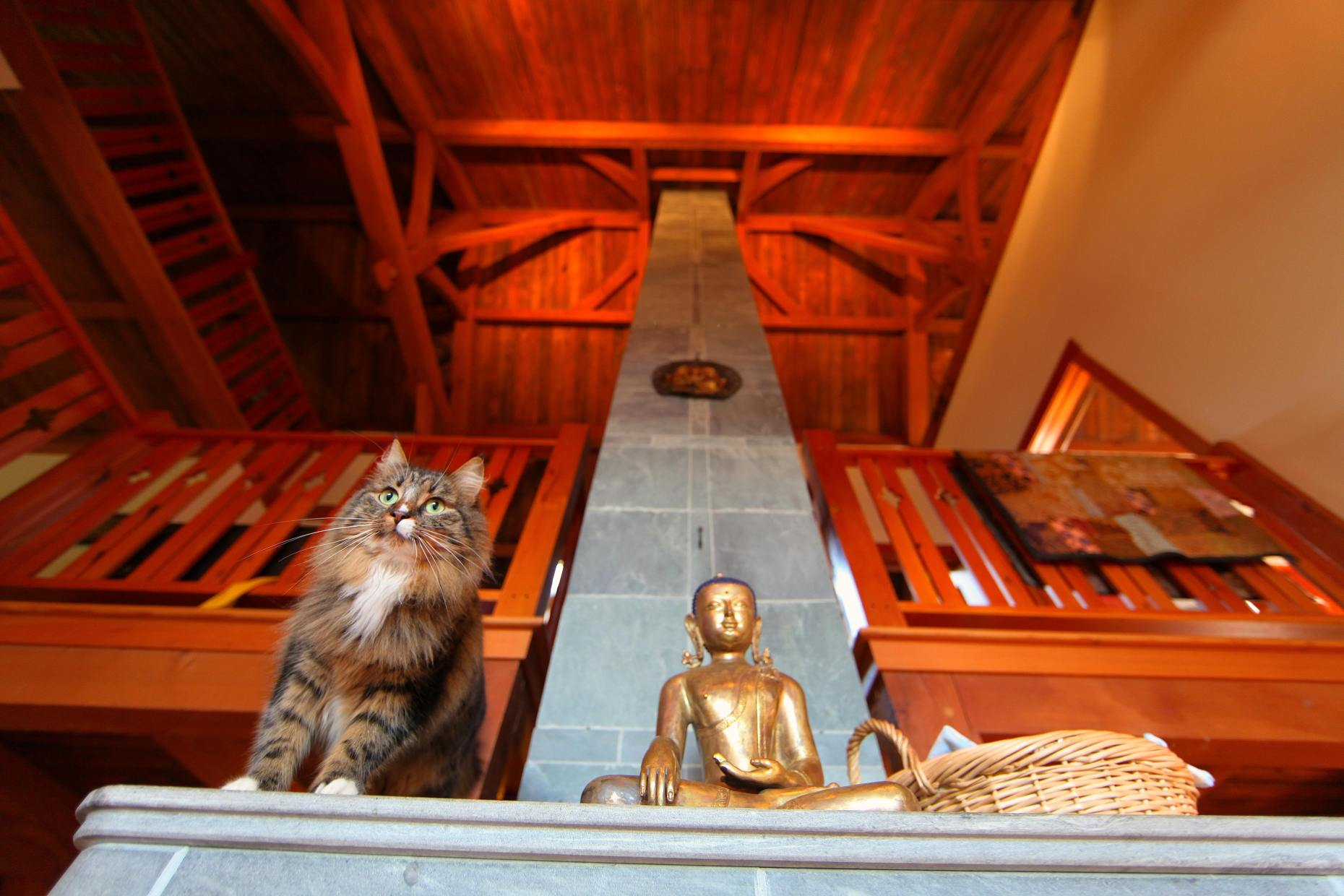 She's Not Very Buddha-like. See The Beams Way Up High? Photo @ Liesl Clark