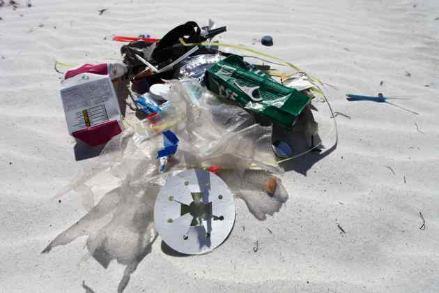 Plastics Retrieved En Route to the Beach. It's Easy To Do. Photo © Liesl Clark