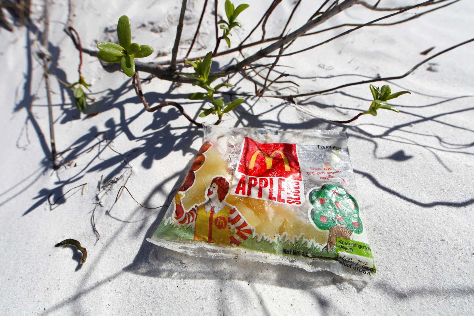 McWashed Ashore. Sliced apples in a bag? Photo © Liesl Clark