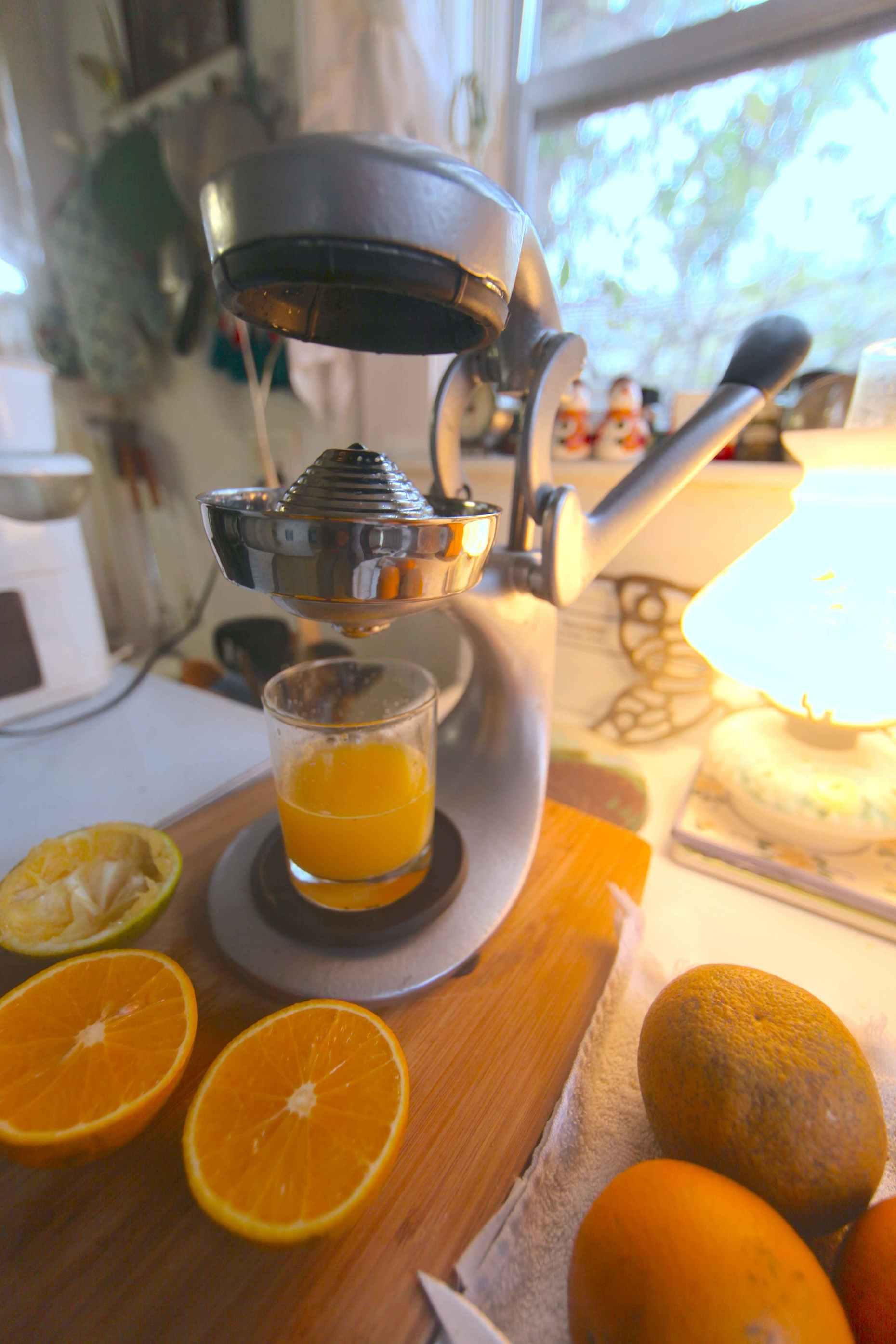 This beautiful, all stainless, citrus press is a thing of beauty. Photo © Liesl Clark