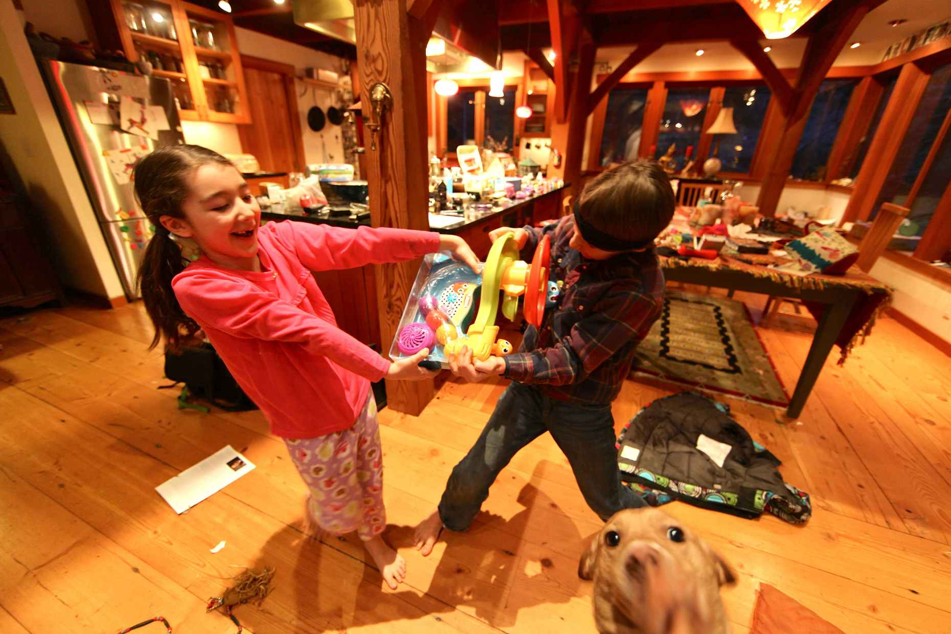 Happy Playing Kids + Dog = Clutter. Photo © Liesl Clark