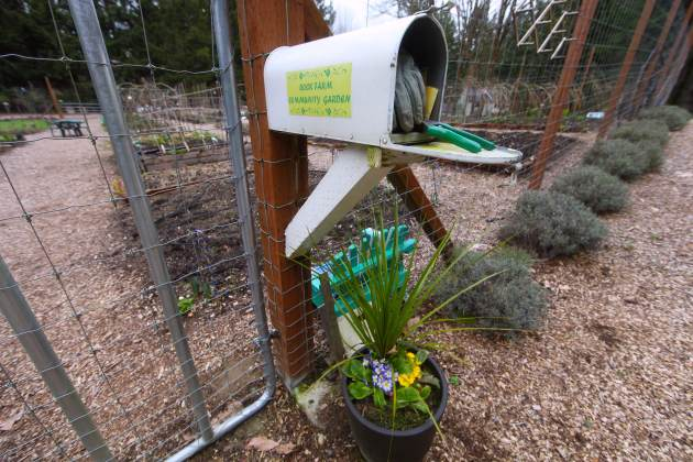 Make a garden tool cache out of an old mailbox. Photo © Liesl Clark