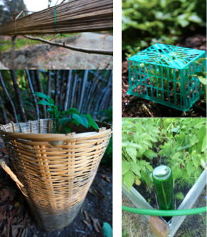 50 Items From Your Trash That Can Help You In Your Garden