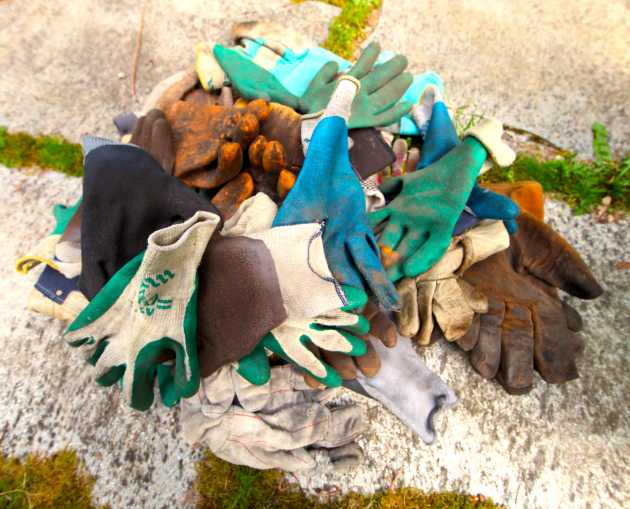 I Have Good Garden Glove Karma. Photo © Liesl Clark