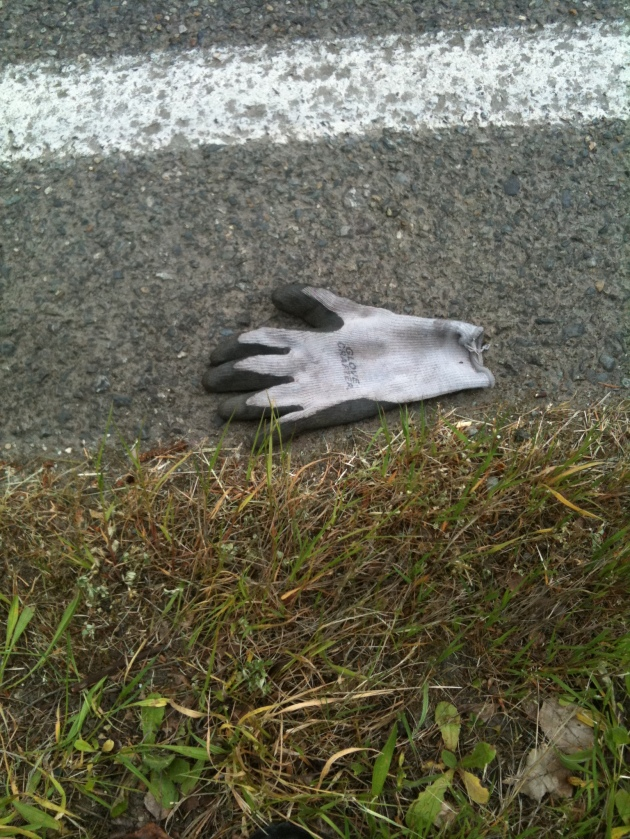 Roadside Garden Glove. Photo © Finn Clark