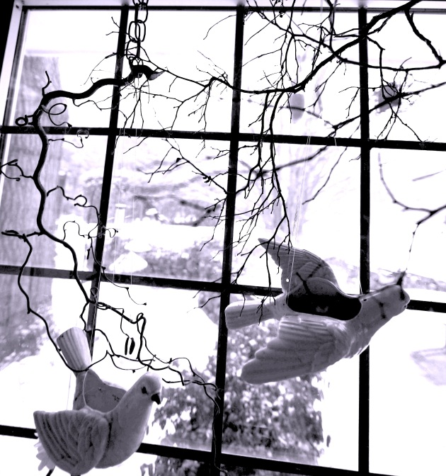 Ceramic Doves in Winter Fly From Sticks Hung Indoors in Winter. Photo © Liesl Clark