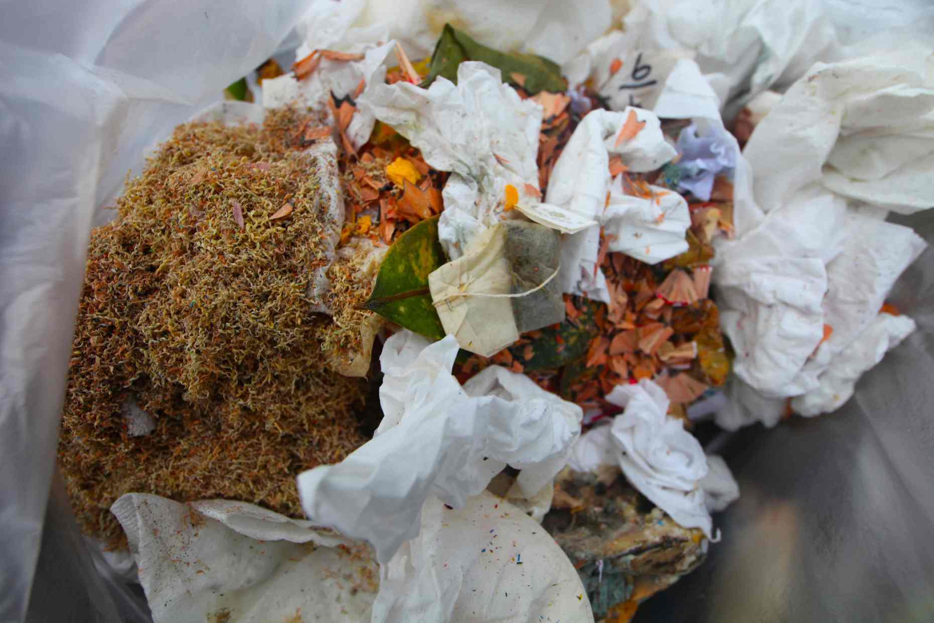 Compostables Found in the Trash.