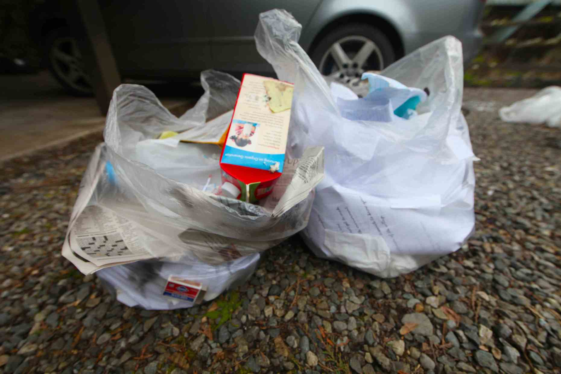 We sorted 2 bags'-worth of recyclables out of the landfill-bound trash.