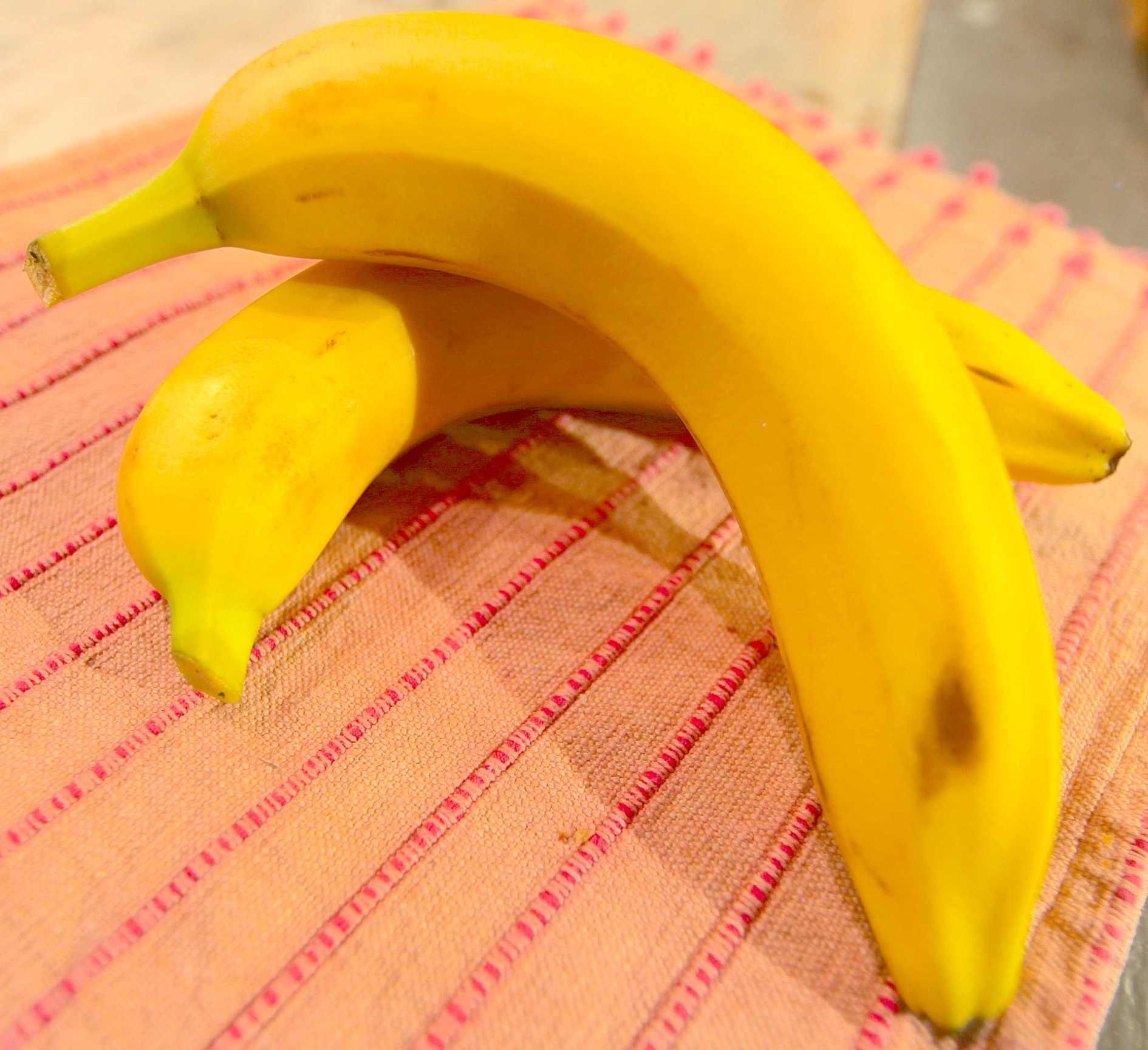 The Miraculous Banana and Its Peel. Photo © Liesl Clark