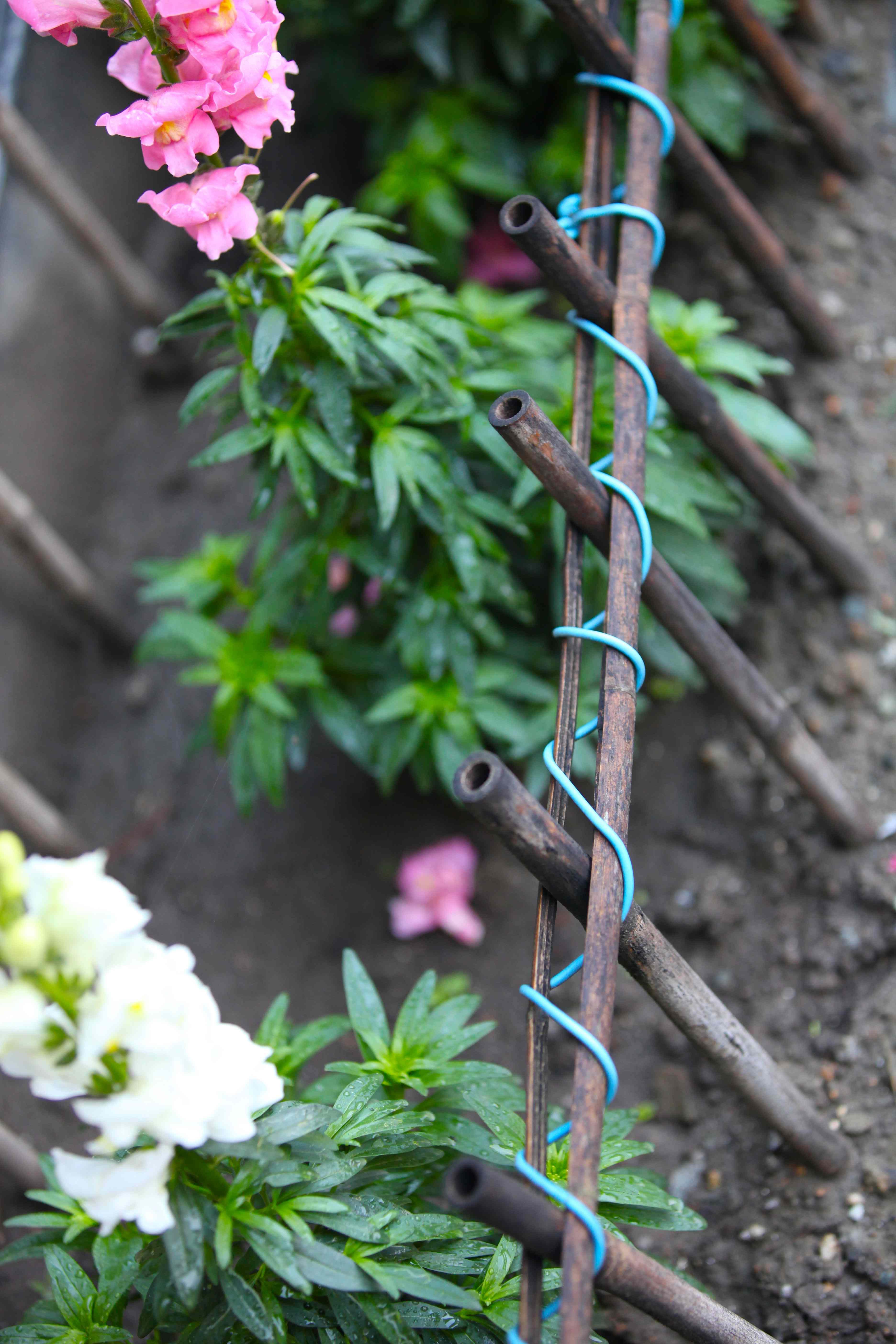 Diy Bamboo Fence Trash Backwards Blog