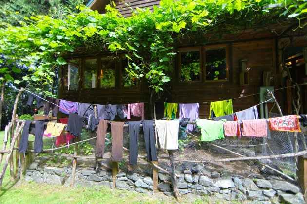 Symbiosis between your laundry and your garden.